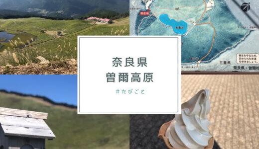 【曽爾高原】ススキの名所!アクセスと注意点【奈良県宇陀郡】