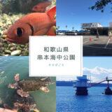 たびごと 串本海中公園