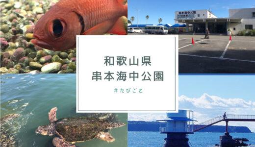 【和歌山 串本海中公園】ウミガメがすぐそこに!子供が喜ぶ触れ合える水族館