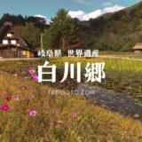 【世界遺産の旅】白川郷の観光地情報 アクセスなど【岐阜県白川村】